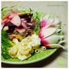 紅色根菜サラダプレート|ビーツと紅くるり、紅甘味大根のサラダ& マカロニサラダとあやめ雪蕪の甘酢漬け