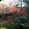 庭園38 建仁寺塔頭西来院方丈前庭