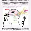 生きてる脳を抜き出して機械と繋ぐ