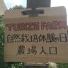 Tubize farm オープンデー