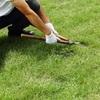 草むしりや草刈りが面倒なときにオススメサービス!