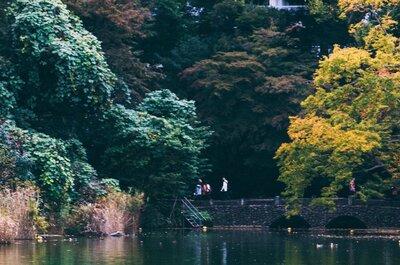 【望遠レンズと井の頭公園】秋を感じるフォトウォーク。