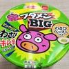 【頭のてっぺんまでわさび襲来】ブタメンBIGのわさびキレ辛とんこつ味をセブンで買って食べてみた!!
