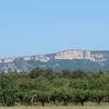 スペイン巡礼:【Day 6】Cirauqui → Villamayor de Monjardin (24.3km)