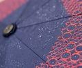 買い替える前にやってみて!傘の撥水が復活する方法