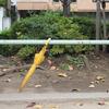 ご近所を「お写んぽ」。標準ズームレンズ M.ZUIKO DIGITAL ED 12-40mm F2.8 PRO