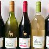 白ワイン好きがおすすめの1000円以内で人気有名美味しい瓶ボトルまとめ