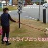 柴犬チャー、八ヶ岳~蓼科 2泊3日の旅 1日目