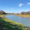 中川から大落古利根川へ歩く 吉川(武蔵野線中川橋梁)から古利根堰