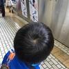 小2息子、一人で新幹線に乗るチャレンジをついに決行!