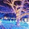 【神奈川県 相模原市】パディントン ベア・キャンプグラウンドへ行ってきました。さがみ湖リゾートプレジャーフォレストの入園料込みに感動!