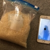 水没したiPhoneは米で本当に治せるのかやってみた!