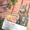 【猫観燻】~癒しのハンター、嵐の前の芸術鑑賞〜