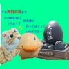 【大涌谷の黒たまご】箱根旅行【お土産】