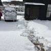 今年の最強寒波から知った日本で1番寒い町について