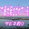 志摩市最大級とされている波切港のサビキ釣り