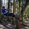 【クライミング】森の中でツリークライミング