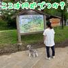トーベ・ヤンソンあけぼの子どもの森公園に行ってきた