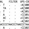 生物学的に同等な可能性があるindelのフィルタリングを行う UPS-indel