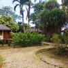 カリブ海の最南端に位置する国、トリニダード・トバゴ