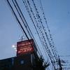 川越駅前のムクドリ