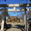 敷島神社と田子山富士 埼玉県志木市