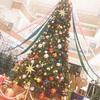 クリスマスツリーが欲しい♪♪