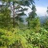 御嶽御厩野林道 水無林道分岐~三浦ダム湖畔