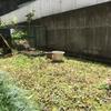 草むしりと椎茸ベビー