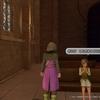 【随時更新】PS4版 ドラクエ11  旅の途中で出会った可愛い女の子モブキャラのスクショをまとめたよ!【美人図鑑】