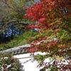 江戸の風情と紅葉色づく『小石川後楽園』