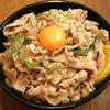 青春の味「伝説のすた丼!」・・・のタレを使って自作すた丼