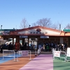 【埼玉オススメのレジャー施設】動物園と遊園地とイルミネーションが楽しめる東武動物公園