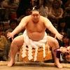 大相撲最強決定戦