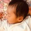 【子育て】新生児の可愛さは儚い