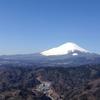 大野山~某アイドル聖地(?)で富士山を~