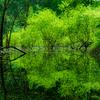 コンデジでガチ撮な風景写真 4種