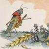 ウソップ物語「アリとキリギリス」です【労働問題】