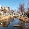 孫と公園。その9 大横川親水公園