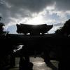 【旅行日記_沖縄】2017年1月その4_首里城でお散歩、金城町石畳道へ。人はあまりいないけど、暮らしが見えて好きな道