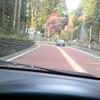 奥多摩の紅葉ドライブ