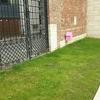 子連れでヨーロッパの美術館のお庭へ!