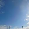 今日の1枚 ~朝の青空~