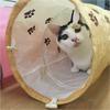 ワンルームに置けるコンパクトな猫トンネル