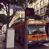 週末はダウンタウンまでバスが行かない!