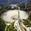 謎の電波バースト、発生源は遠方の銀河 研究
