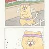 ネコノヒー「ジョギング悲劇」