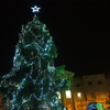 Diary in English♡On the 8th of Nov.  A Christmas tree's lights being turned on!