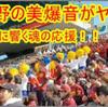 目指せ!甲子園!高校野球だけじゃない!応援する吹奏楽部が凄いんです!