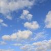 朝景色~その102『雲は好きですか?』